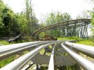 Smoky Mountain Alpine Coaster Pigeon Forge Tn