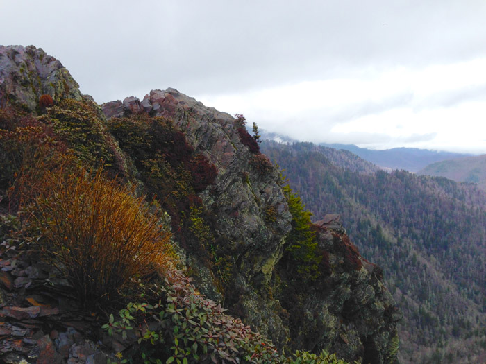 Charlie's Bunion Smoky Mountains