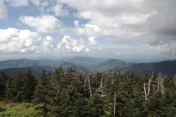 Breathtaking Clingman's Dome View