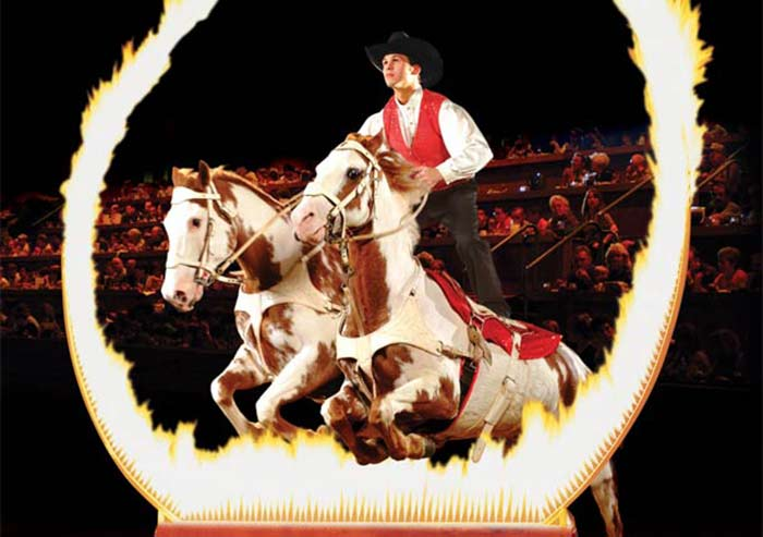 Dixie Stampede Dinner Attraction image