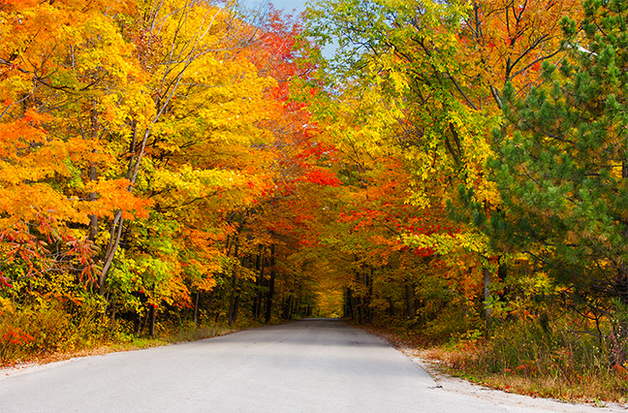 Beautiful Fall Drives in the Smokies
