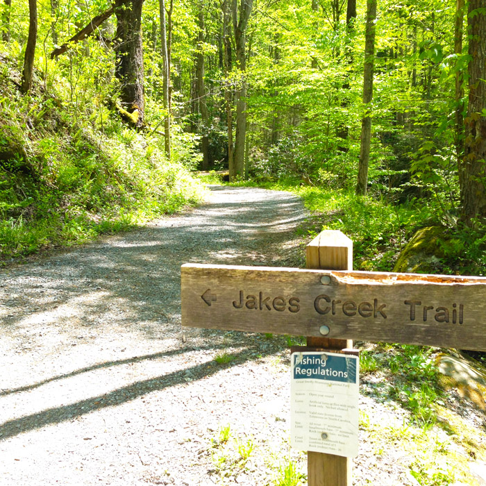 Jakes Creek Trail to Avent Cabin