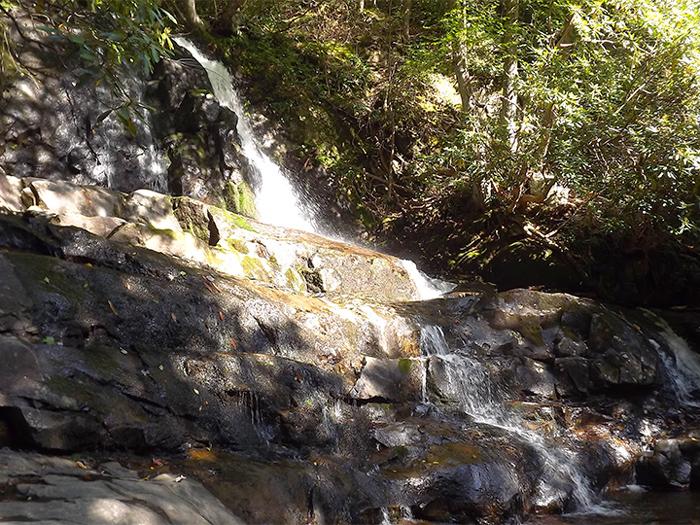 Waterfall Hike Near Wears Valley