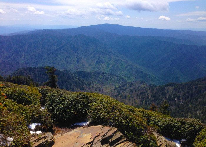 View From Mt. Leconte in the Smokies