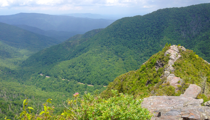View From The Chimney Tops