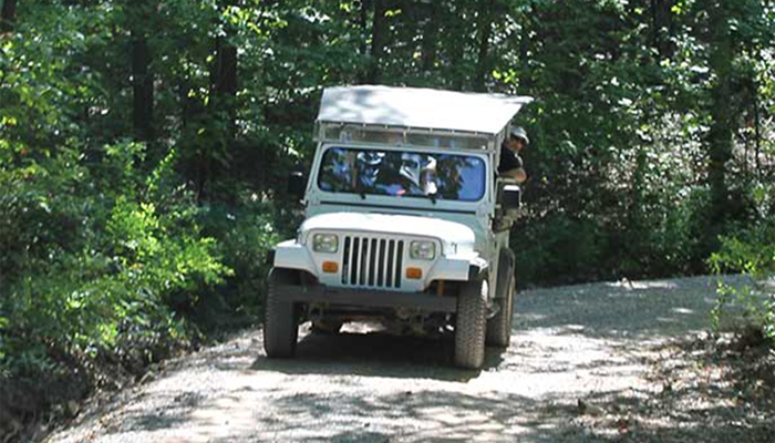 Jeep Tours With Wildwater