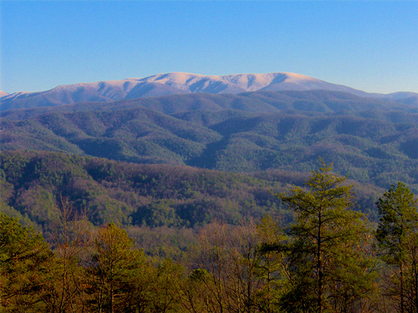 View Gregorys Bald in Winter