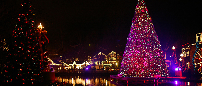 See Christmas Lights in Pigeon Forge During Thanksgiving