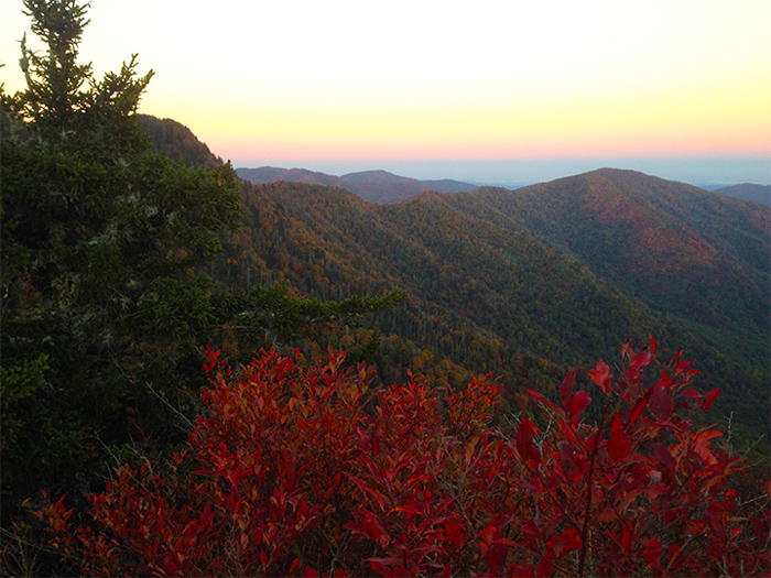 View in the Smoky Mountains in November