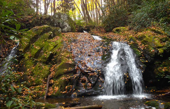 Fall Waterfall in the Great Smoky Mountains