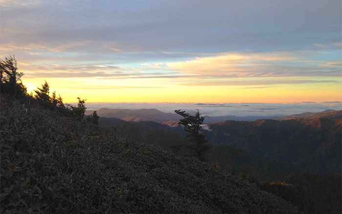 View From Mt. LeConte Smoky Mountains