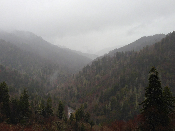 View From Morton Overlook