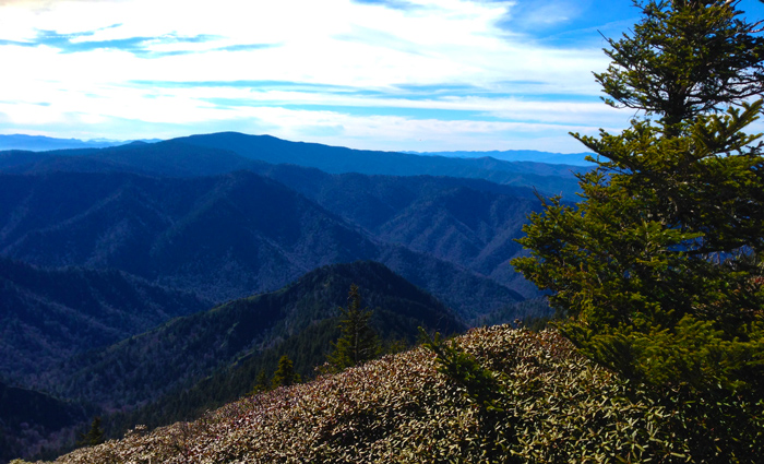 View of Clingman's Dome Great Smoky Mountains