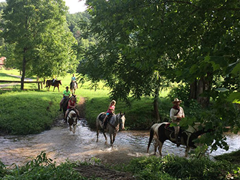 Walden Stables-Romantic Things to Do in Pigeon Forge