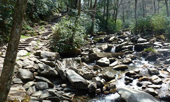 Hiking-Romantic Things to Do in the Smokies