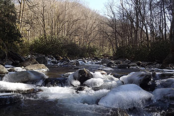 Enjoy Valentines Day 2015 in the Smokies