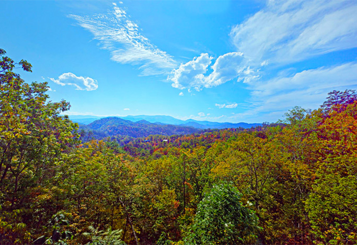 Cabin View in the Smoky Mountains