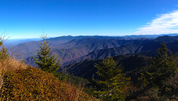 View From Mt. LeConte in January