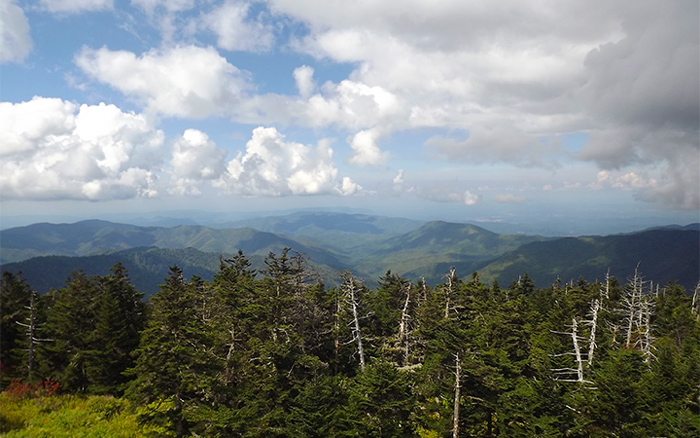 Clingmans Dome Tower View