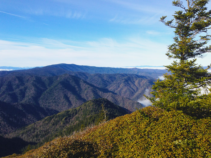 Free Views in the Great Smoky Mountains National Park