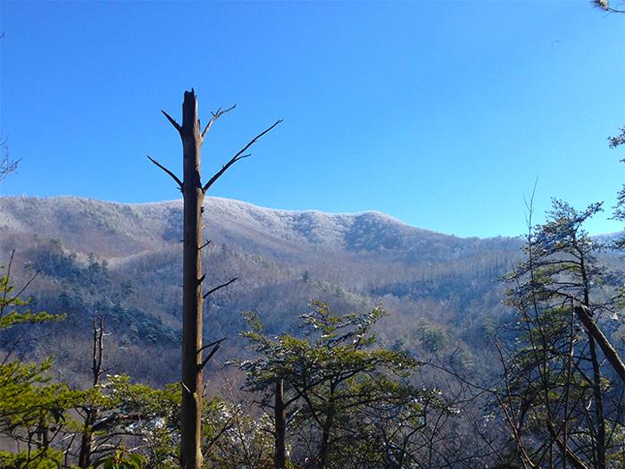 December Snow Smoky Mountains