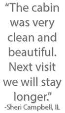 Pigeon Forge Cabins USA Guest Comment